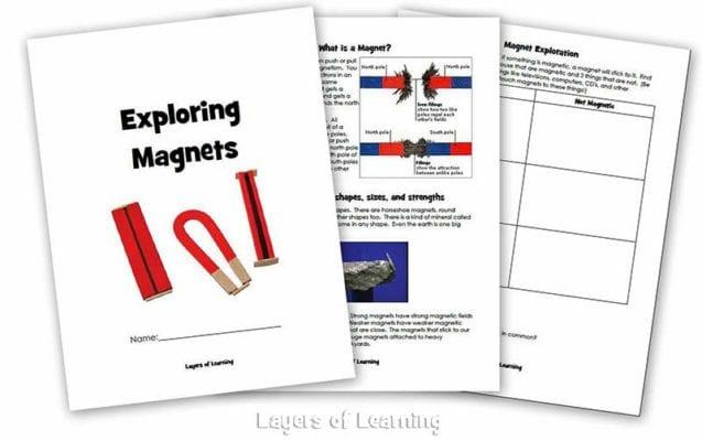 Printable Magnet Unit Book