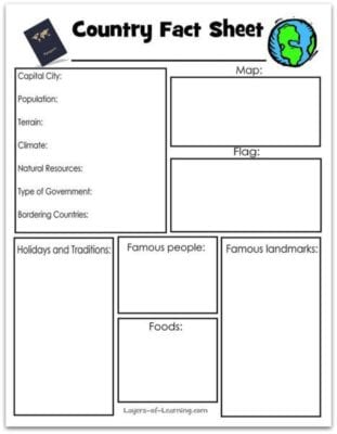 What does a graphic organizer look like