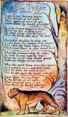 a comparison of william blakes the lamb and the tyger The lamb and the tyger by william blake essay in many cases, the onset of this revolution begins with the subjugation of a people, often through the process of.