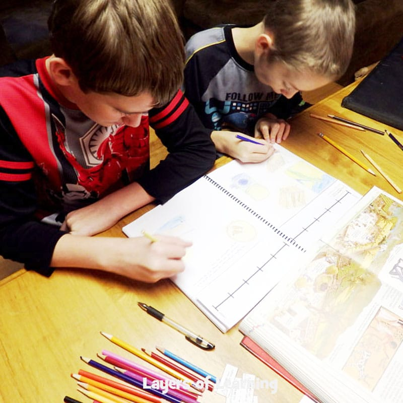 Two_boys_studying_in_their_homeschool
